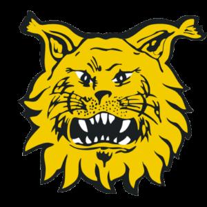 Ilves ry 90v logo